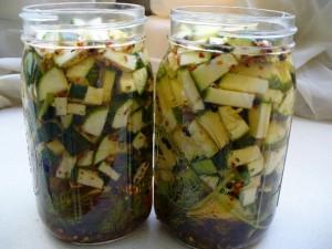 lacto-fermenting zucchini